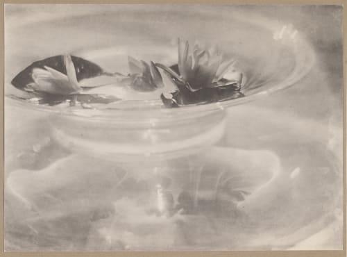 Still Life De Meyer, Baron Adolf  (American, 1868-1946)
