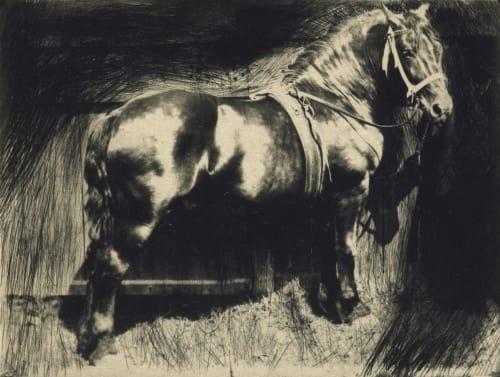 Horse Eugene, Frank  (American, 1865-1936)