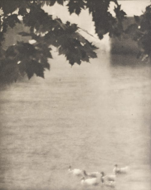 Ducks, Lake Como Struss, Karl F.  (American, 1886-1981)