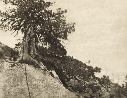 Dryads Brigman, Annie A.  (American, 1869-1950)