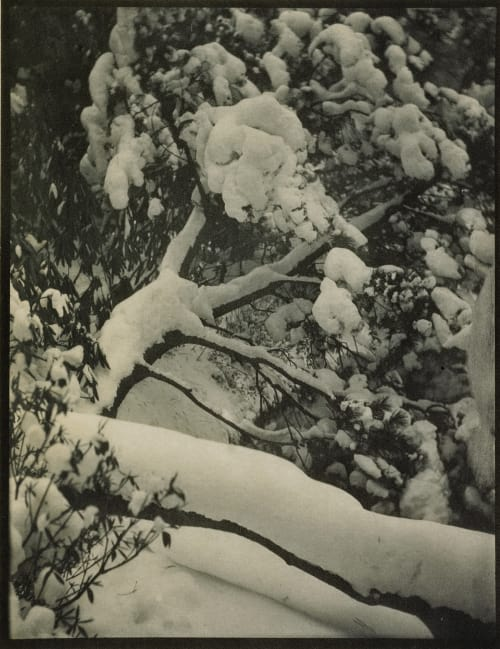 Winter Lewis, Arthur Allen  (American, 1873-1957)