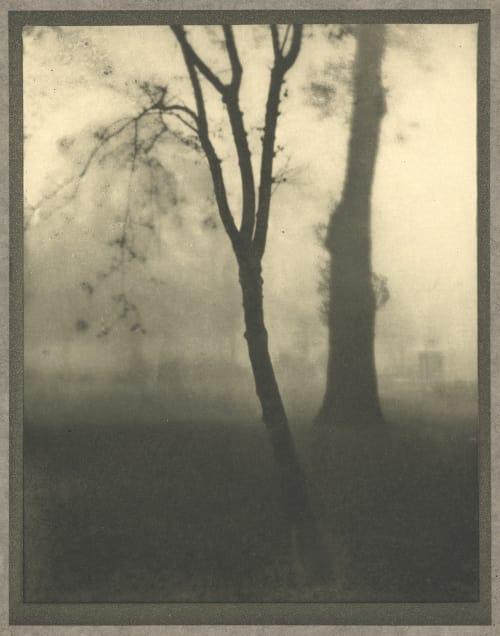 Kensington Gardens, November Coburn, Alvin Langdon  (American, 1882-1966)