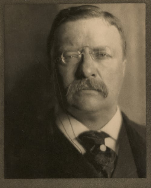 Theodore Roosevelt, The White House Coburn, Alvin Langdon  (American, 1882-1966)