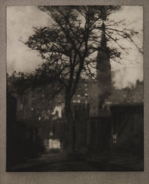 A Tree in Greyfriars Churchyard, Edinburgh Coburn, Alvin Langdon  (American, 1882-1966)