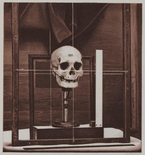 Arrangement for Taking Composite Photographs of Skulls, Photograph No. 1 Bien, Julius  (American, 1826-1909)
