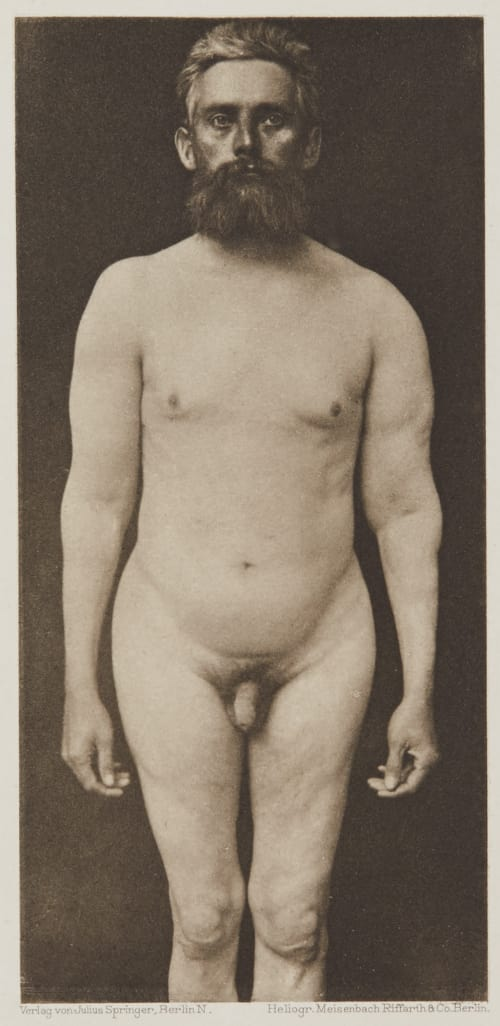 Tafel 15 Curschmann, Dr. H.   (German, 1846-1910)