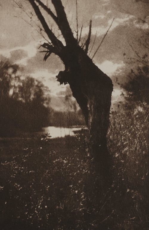 Herbstabend Am Moor Kuehn, Heinrich  (Austrian-German, 1866-1944)
