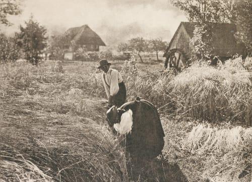 Kornernte Stieglitz, Alfred  (American, 1864-1946)