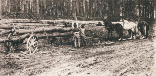 Schwere Arbeit Brandt, Ulrich