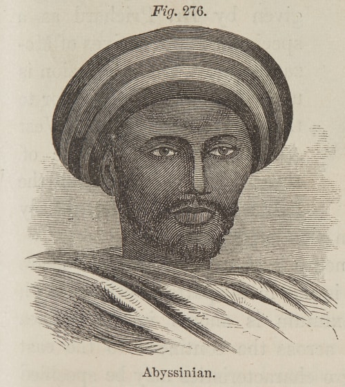 Fig. 276. Abyssinian Draper, John William  (American, 1811-1882)