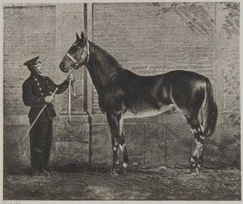 Fitz Gladiator Delton, Louis Jean  (French, 1807-1891)