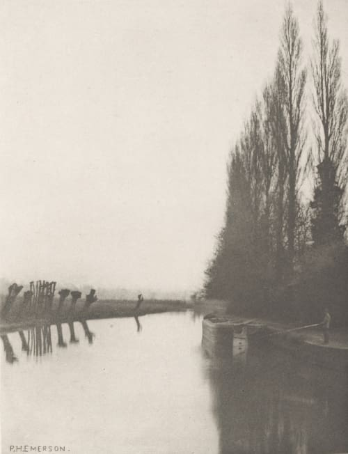 Plate XIX Poplars and Pollards on the Lea, Near Broxbourne Emerson, Peter Henry  (British, 1856-1936)
