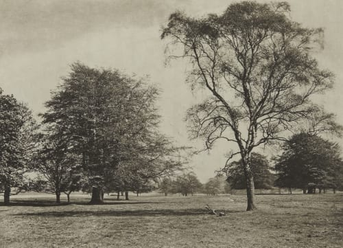 The Park. From the River Bank Annan, James Craig  (Scottish, 1864-1946)
