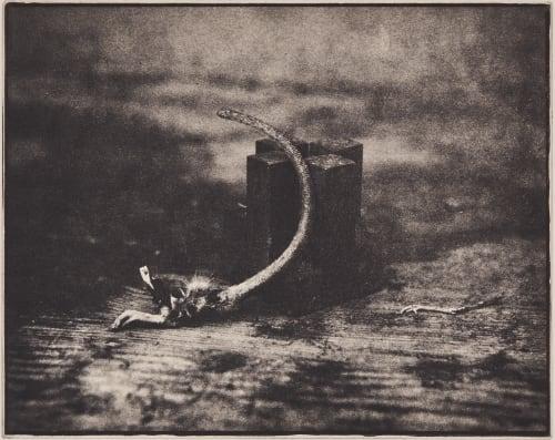 Tails Tale Faure, Hendrik 1951  (b.German)