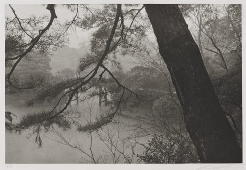 Kyoto, 1979 Friedlander, Lee  (American, b.1934)