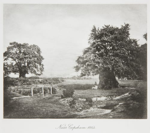 Near Copsham, 1864 Evans, Fredrick  (British, 1853-1943)