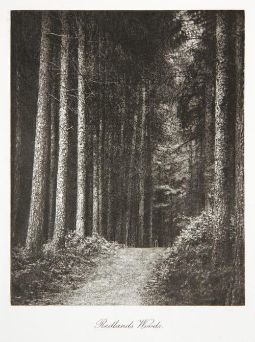 Redlands Woods Evans, Fredrick  (British, 1853-1943)