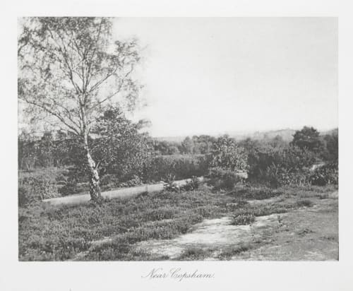 Near Copsham Evans, Fredrick  (British, 1853-1943)