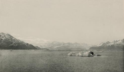 Iceberg in Glacier Bay Merriam, Clinton Hart  (American, 1855-1902)
