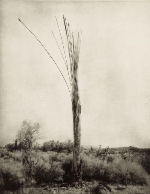 No. 43 Klett, Mark  (American, b.1952)