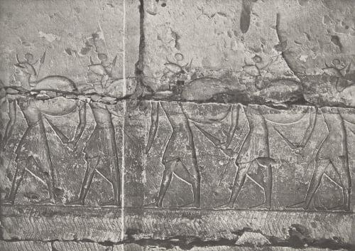 31 Abydos Temple de Ramsès Unknown