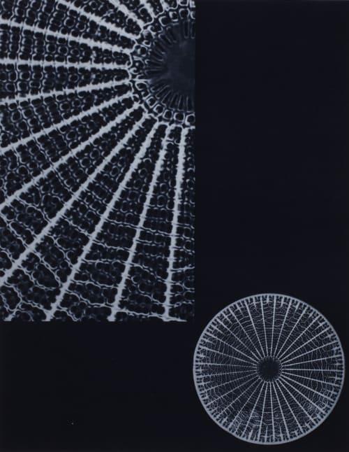 Plancche XVIII Diatomée Albin-Guillot, Laure  (French, 1892-1962)