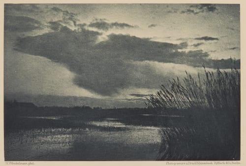 See Bei Sturm Winckelmann, H.  (New Zealand)