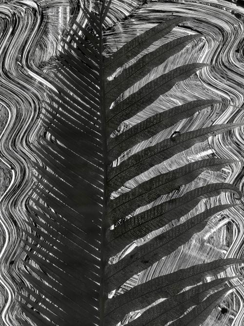 Fern #5 Morell, Abelardo  (American, b.b.1948)
