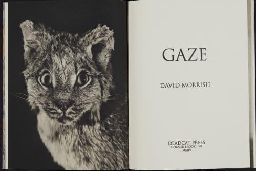 Morrish, David  (Canadian, b.1953)