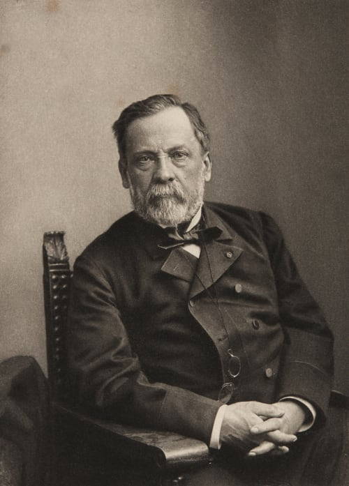 Louis Pasteur Nadar  (French, 1820-1910)