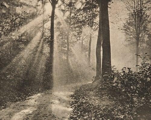Matinée d'automne Hannon, Edouard  (Belgian, 1853-1931)