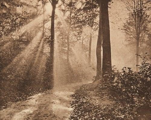 Matinée d'automne (alt) Hannon, Edouard  (Belgian, 1853-1931)