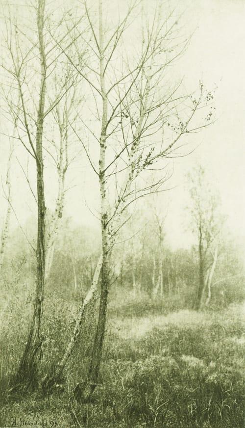 Novembre Henneberg, Hugo  (Austrian, 1863-1918)