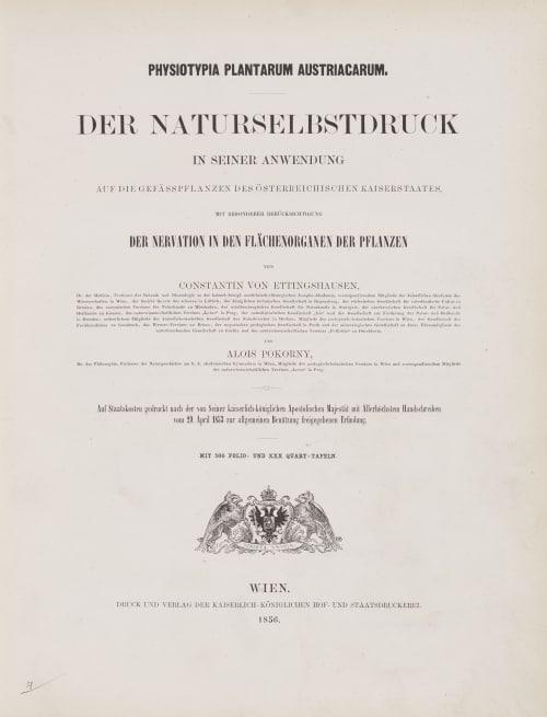 Tab. XXX Auer, Alois  (Austrian, 1813-1869)