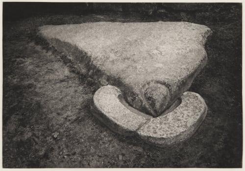 Condor stone Edward Ranney  (American, b.b.1962)
