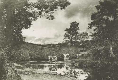 Summer Evening Robinson, Henry Peach  (British, 1830-1901)