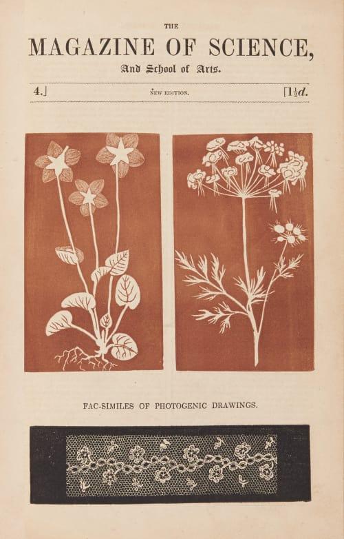 Facsimiles of Photogenic Drawings G.F.