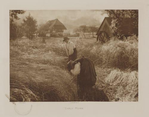 Early Morn Stieglitz, Alfred  (American, 1864-1946)