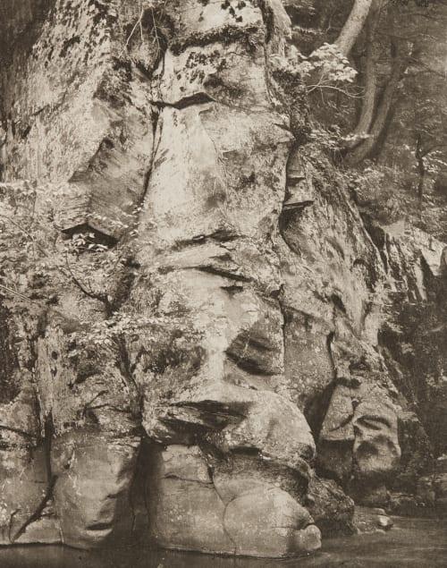 A Foreground Study Edwards, Ernest  (British, 1837-1903)