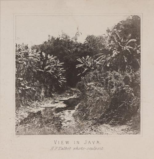 View in Java Talbot, William Henry Fox  (British, 1800-1877)