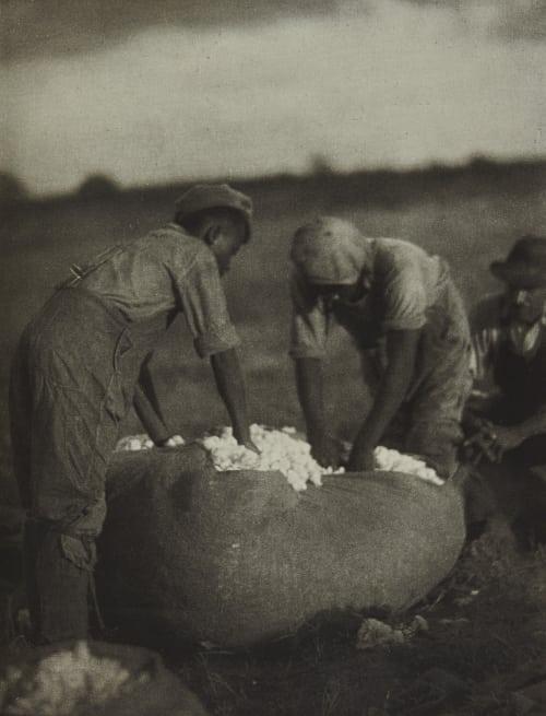 Plate 77 Ulmann, Doris  (American, 1882-1934)