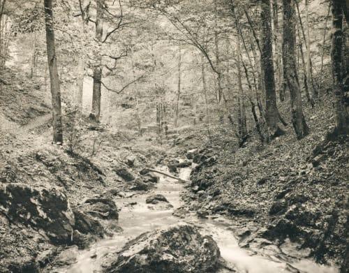 Waldinneres Nähr, Moritz  (Austrian, 1859-1945)
