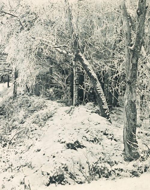 Winterlandschaft Schulz, G.  (1849-1912)