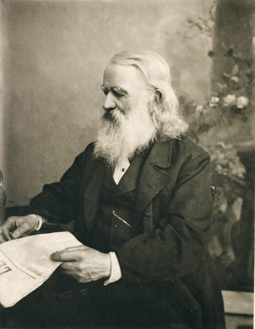 Der Alte Politiker Scolik, Charles  (American, 1854-1928)