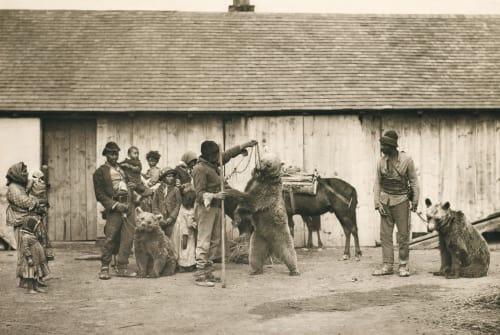 Die Bärentreiber Strakosch, Julius   (Austrian, 1852-1901)