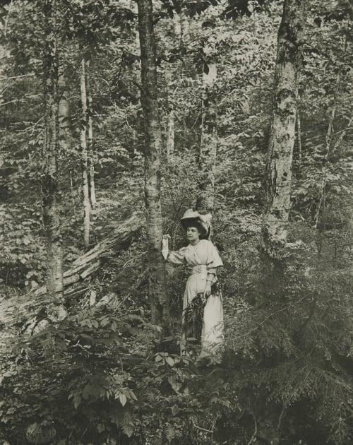 In the Woods Walker, W.C.