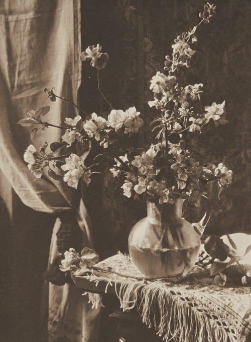 Stilleben Kuehn, Heinrich  (Austrian-German, 1866-1944)