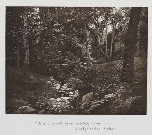 A Wild Brook Williams, James Leon  (American, 1852-1932)