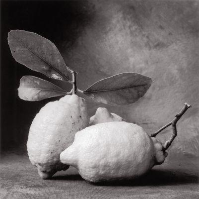 Tuscan Lemons