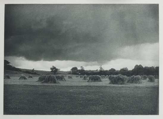 The Edge of the Storm, Egremont.Nature Studies in Berkshire